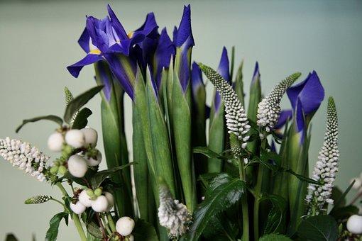 Lilies, Bouquet, Blue White, Cut Flowers