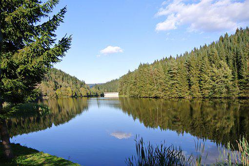 Forest, Trees, Lake, Mountains, Resin, Lower Saxony