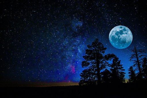 Moon, Milky Way, Tree, Universe, Space