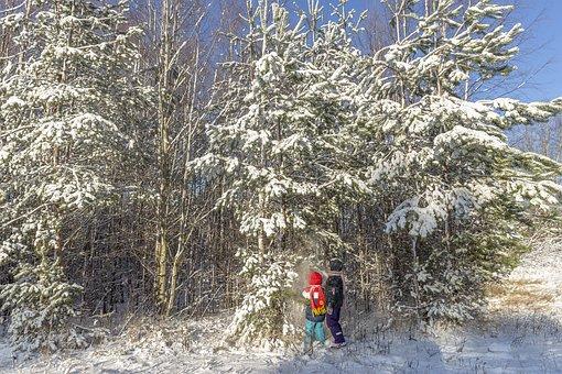 Winter, Sestroretsk, February, Stroll