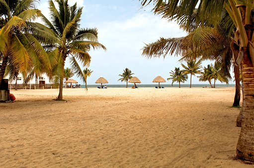 Beach, Placencia, Palm Trees, Belize