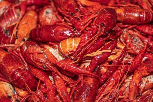 Lobster, Shift, Orange, Red, Eyes, Body, Animal