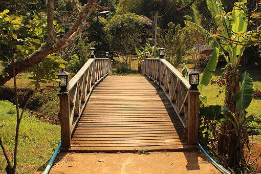 Bridge, Wood Bridge, River Bridge, River, Sen Monourom