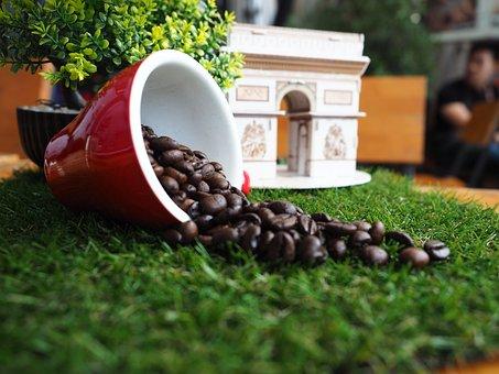 Coffee Bean, Caffeine, Coffee, Roasted, Cups Of Coffee