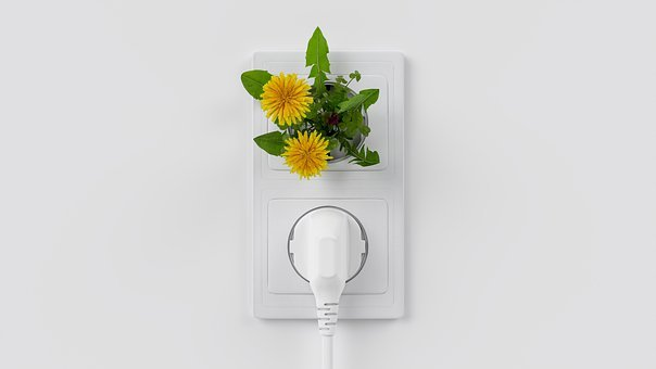 Energy, Clean, Renewable, Sustainable, Green, Socket
