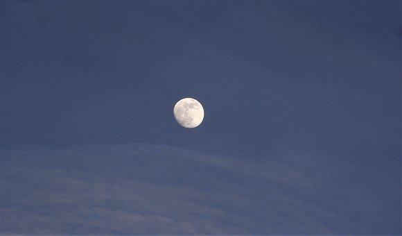 Evening Sky, Autumn, Full Moon, Sky, Walk In The Park
