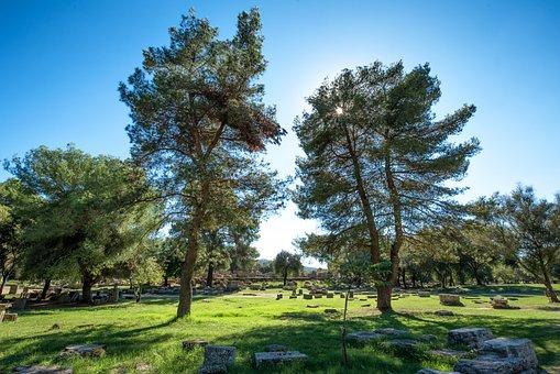 Olympia, Greece, Tree, Zeus, History