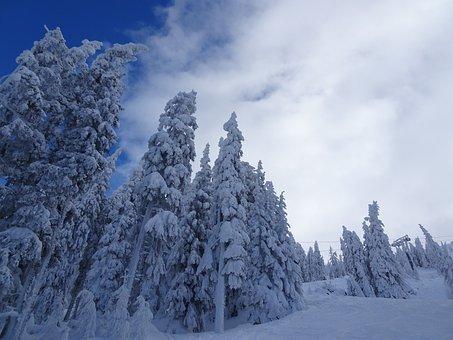 Snow, Romantic, Cold, Winter, Love, Romance, Heart