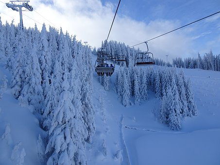 Snow, Skiing, Lift, Forest, Winter, Mountains, Nature