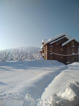 Kashmir, Gulmarg, Srinagar, Snowfall, Snow
