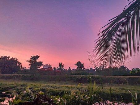 Dusk, Evening, Dawn, Farmers, Sri Lanka, Asia