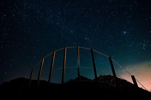 La Reptiles, Star, Sky, Starry Sky