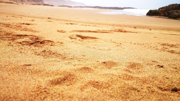 Sand, Trace, Beach, Summer, Wallpaper