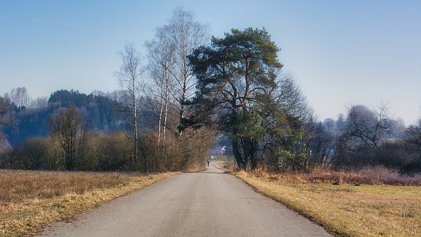 Autumn, Away, Trees, Nature, Mood, Trail