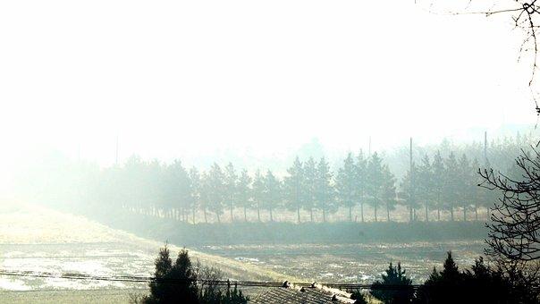 Natural, Landscape, Snow, Blur