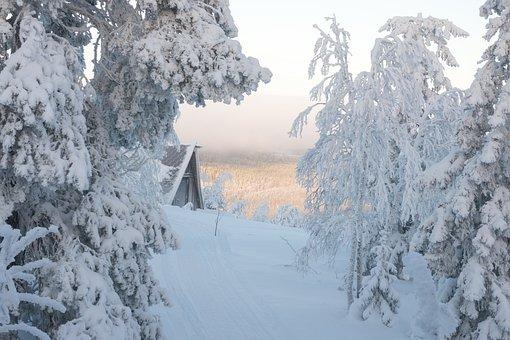 Winter, Snow, Finland, Cold, Nature