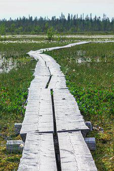 Finland, Lapland, Nature, Landscape