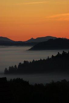Fog, Landscape, Palatinate, Forest