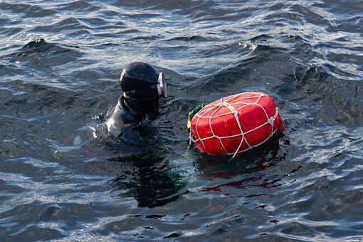 Female Diver, Woman, Sea, Scuba, Underwater, Nature