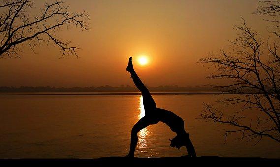 Sunset, Yoga, Nature, Tree, Ocean, Meditation, Zen