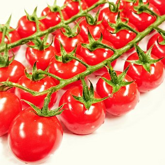 Tomatoes, Vegetables, Tomato, Eat, Food, Fresh, Healthy