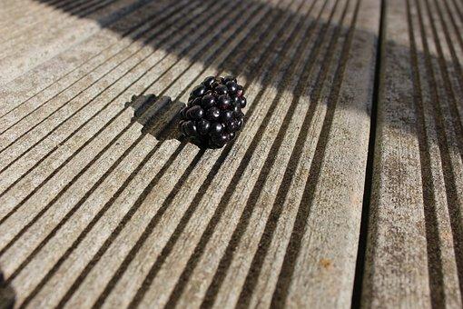 Raspberry, Sunny, Summer, Green, Health, Nature