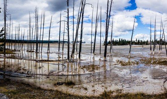 Bobby Socks, Yellowstone, Hot Spring, Geothermal, Pool