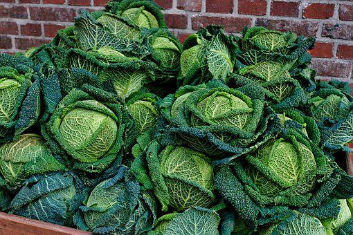 Kale, Food, Vegetables, Healthy, Kohl, Green, Nutrition