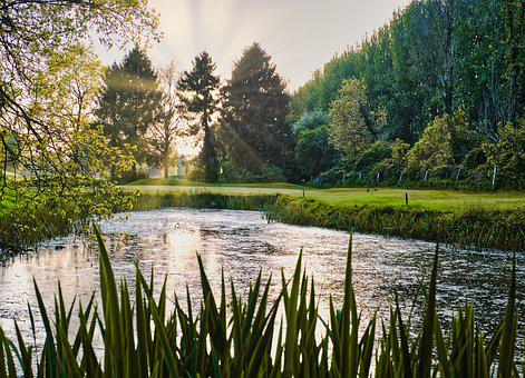 Golf, Evening Sun, Pond, Green, Landscape
