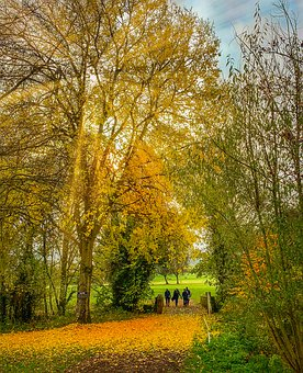 Golf, Autumn, Trees, Golfing, Landscape