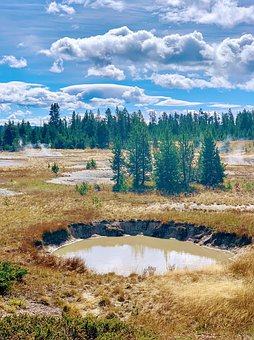 Yellowstone, Yellowstone National Park, Wyoming, Nature