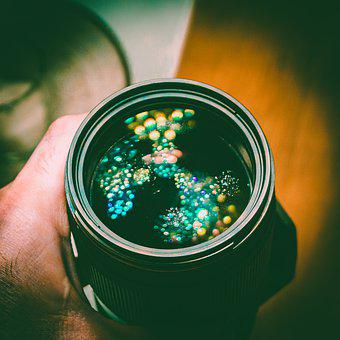 Lens, Objektiv, Hand, Photography
