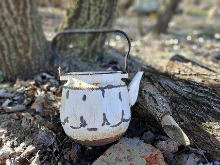 Maker, Tea, Tea Party, Drink, Hot, Breakfast, Kitchen