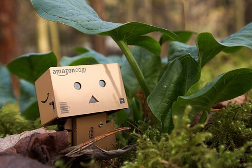 Canon, Amazon, Danbo, Small, Nature, Tree, Friends