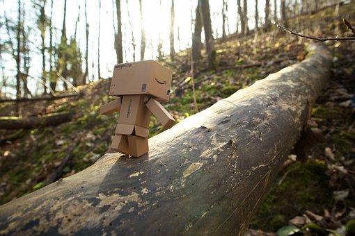 Canon, Amazon, Danbo, Small, Nature, Tree, Friends
