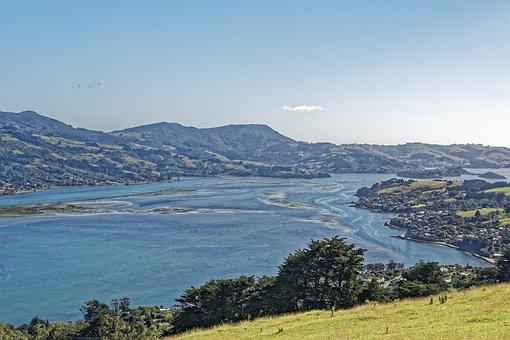 New Zealand, Otago Harbour