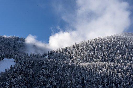 Telluride, Colorado, Ski, Ski Resort, Outdoors, Snow