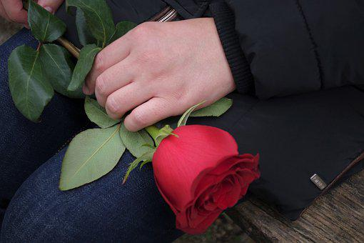Red Rose In Girls Hand, Romantic, Love, Gift, Romance