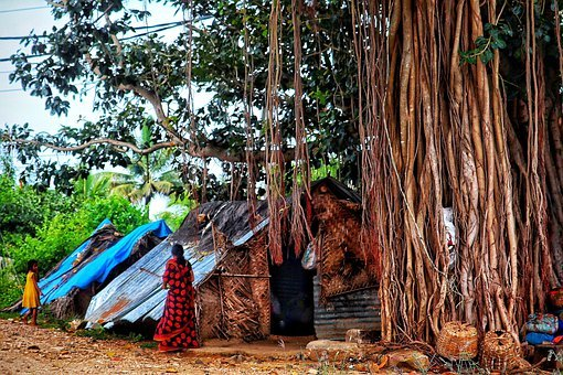 India, Straw Hut, Sheet Metal Roof, On The Land