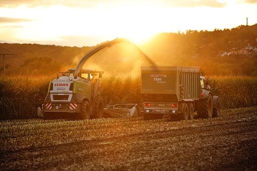 Tractor, Sunset, Autumn, Field, Landscape, Agriculture