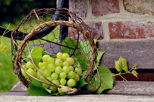 Grapes, Fruit, Winegrowing, Fruits