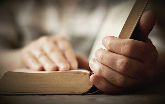 Book, Read, Hands, Bible, Knowledge, Education, Study