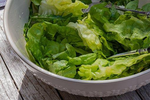 Lettuce, Salad, Vegetable, Food, Healthy, Lunch, Green
