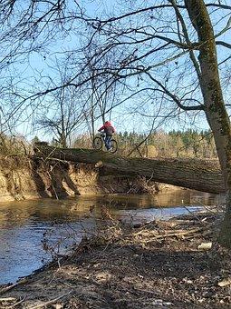 Sport, Leisure, Bike, Mountain Bike, Terrain Travel