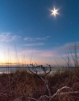 Moon Beams, Ocean, Driftwood, Clouds, Blue, Sea