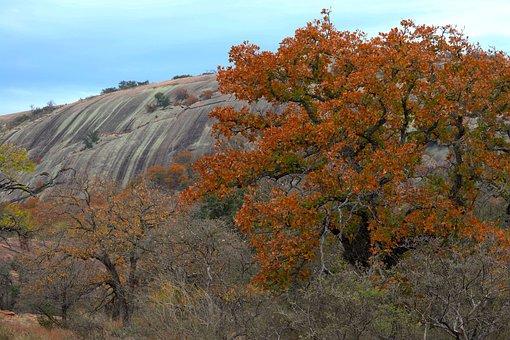 Orange, Rust, Enchanted Rock