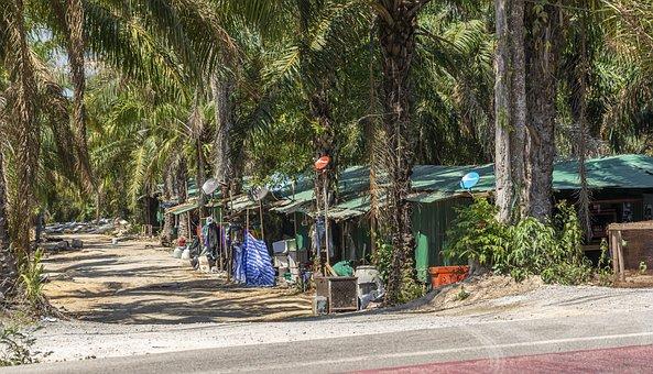 Slum, Poor, Poverty, House, Architecture