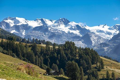 Mountain, Champoluc, Snow, Pine Forest