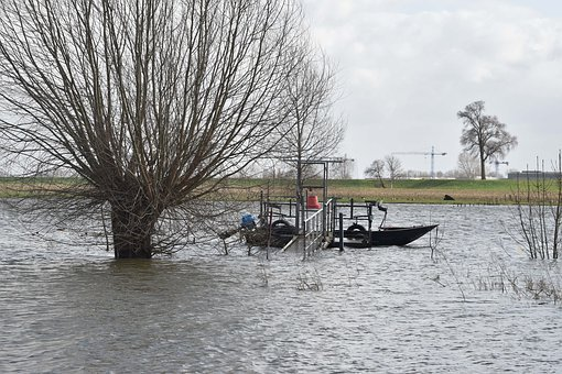 High Water, River, Flood, Water, Climate Change, Storm