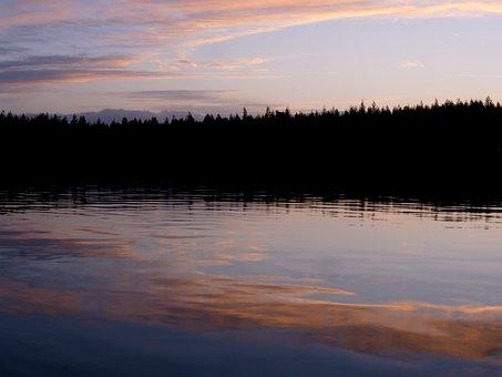Shoreline, Estuary, Reflections, Clouds, Dusk, Forest